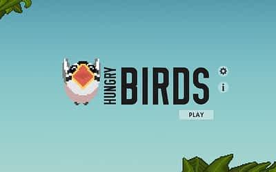Preparing and Understanding Week 2 – Hungry Birds